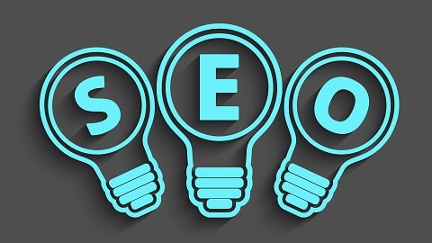 Best trainer for SEO
